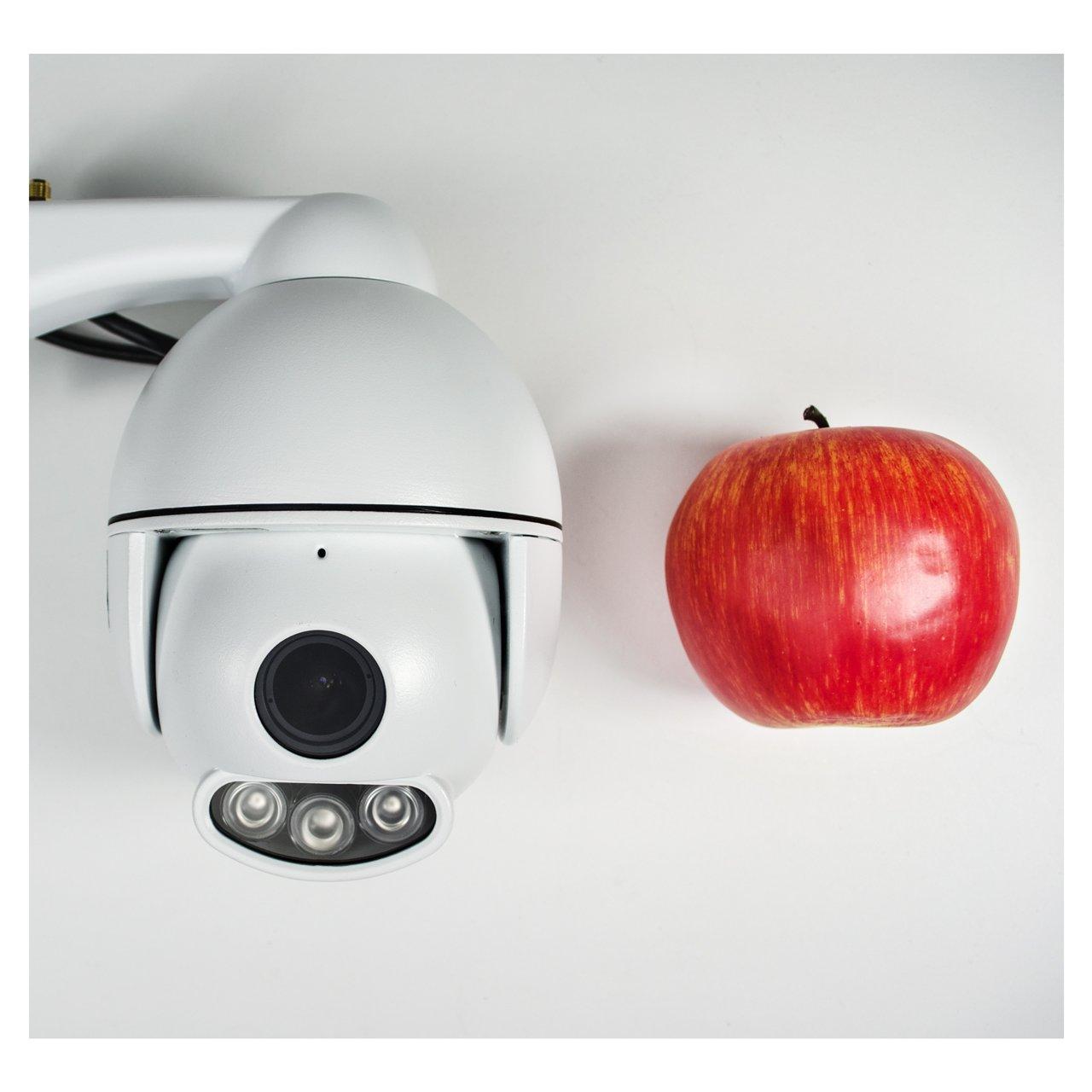 Mini PTZ Outdoor Überwachungskamera