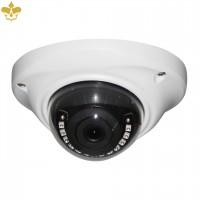 3 MP Outdoor Dome-Überwachungskamera mit Sony-Starvis-Bildsensor und flexiblem Fernzugriff