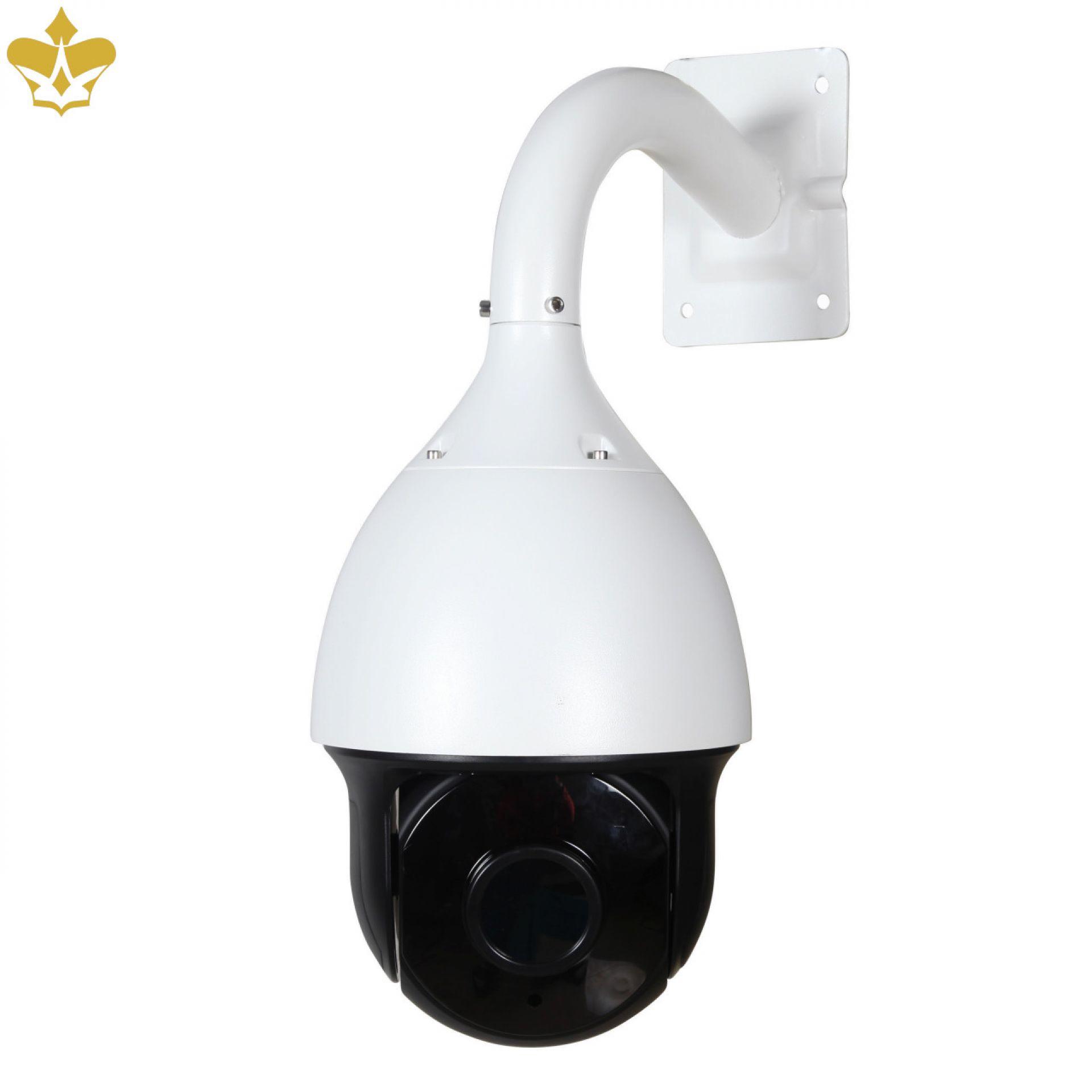 4 MP PTZ Outdoor Überwachungskamera